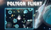 Polygon Flight