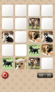 Dogs Memo