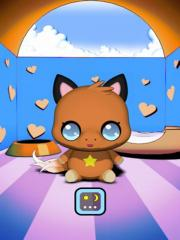 Baby Fox Pocket