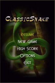 Classic Snake II