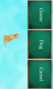 Zoo Kids: Puzzle Pack 2