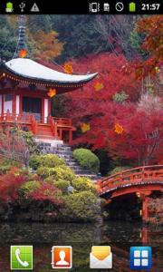 Beauty Autumn LWP