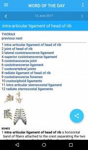 DORLAND'S/GRAY'S Pocket Atlas of Anatomy