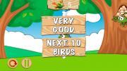 Punky Birds