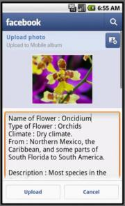 Flower Collection App