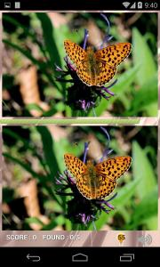 EyeSpy Butterfly