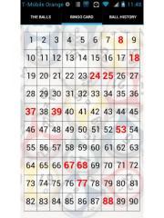 BingoCaller Pro