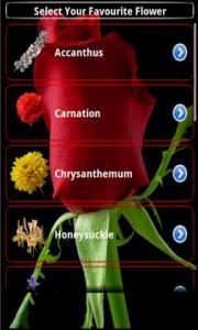 Flowers Astrology