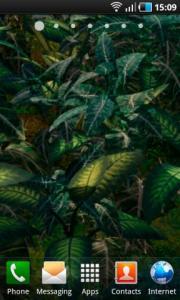 Plants Animated