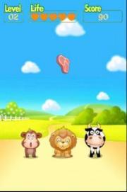 Feed Animal