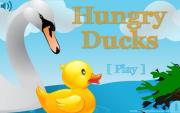 Hungry Ducks Free