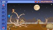 Desert Owl Rescue