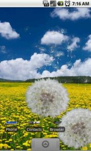 Flower Fields: Dandelion LWP