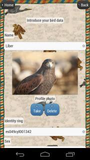 Falcon Log
