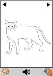 Paint Cat