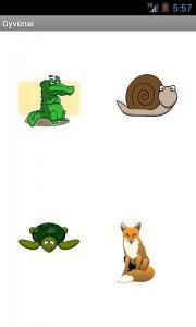 Gyvūnai