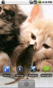 Cat And Mouse Live Wallpaper