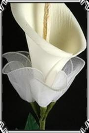 Calla Lilly Wallpapers HD