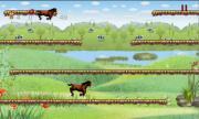 horse run game