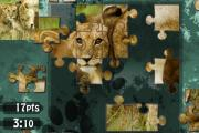 Jigsaw Puzzle Nature Full