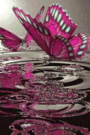 Pink Butterflies On Water Live Wallpaper