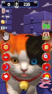 Cute Kitten virtual pet