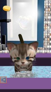 Cute Kitten virtual pet