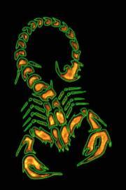 Scorpion Live Wallpaper