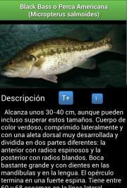 Guía de Peces de Río