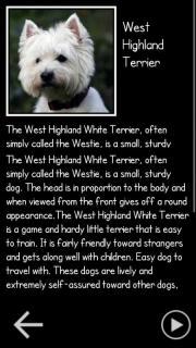 Woof Woof!!