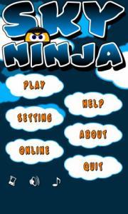 Sky Ninja