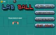 Lab Ball Puzzle