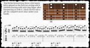 Shred Guitar Mastery